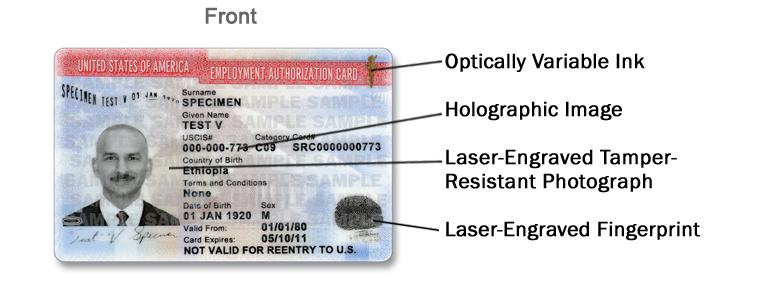 New Employment Authorization Document (EAD) design