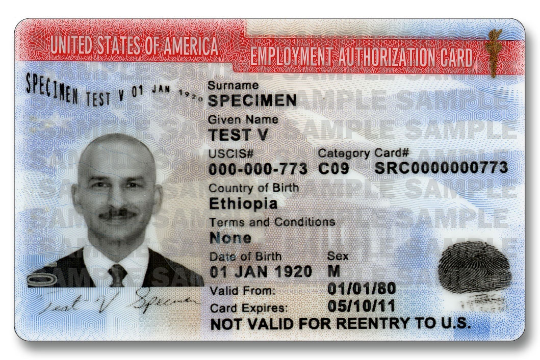 US EAD Employment Authorization Card USCIS 1059×706